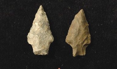 Examples of the Stanley Point flint spearpoints, as described in the book.